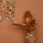 Эффектная индивидуальность коттеджа — мраморная штукатурка для фасада