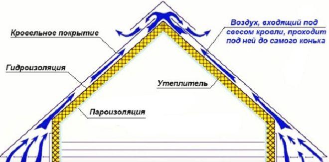skatnay-krusha